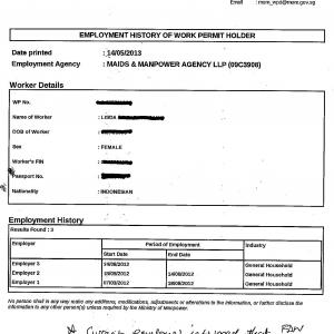 JOB HISTORY - SAMPLE (ASK THE AGENCY FOR A PRINT OUT)